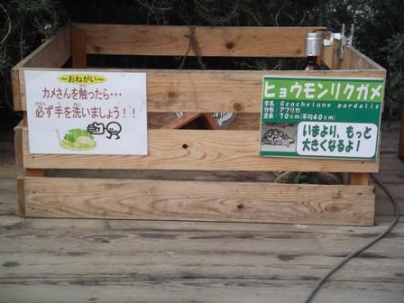 111027kametooku.JPG