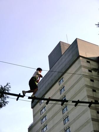 20120630tree-tetsuya.JPG