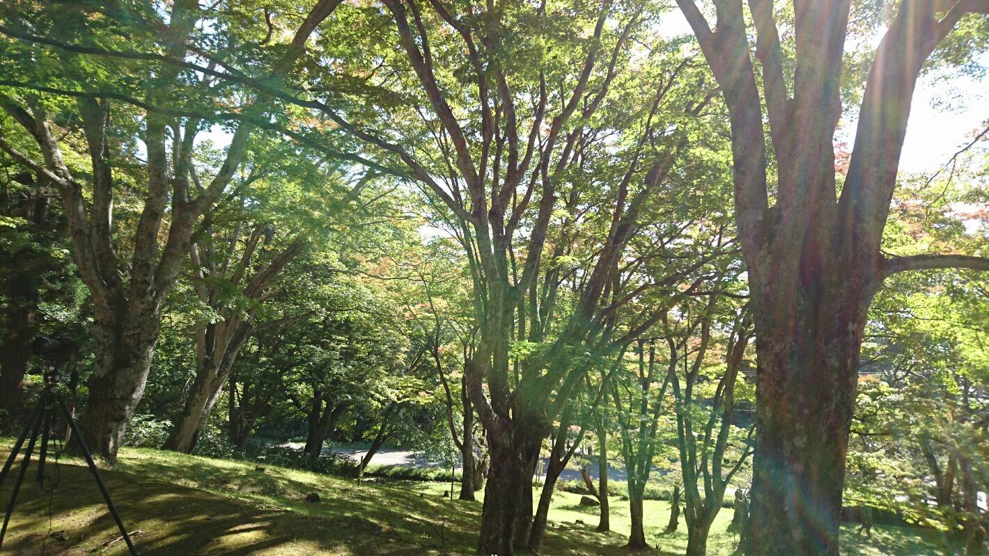 http://www.listel-inawashiro.jp/blog/D2.JPG