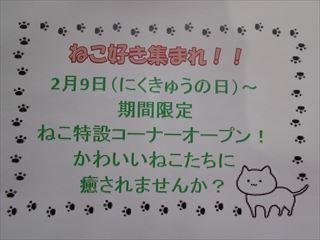http://www.listel-inawashiro.jp/blog/DSCN0920_R.JPG