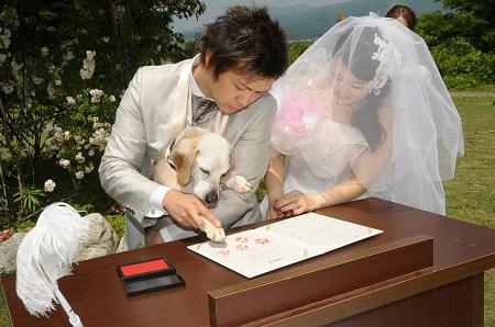 http://www.listel-inawashiro.jp/blog/DSC_0064.JPG