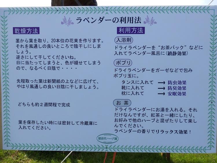http://www.listel-inawashiro.jp/blog/P6160017.JPG