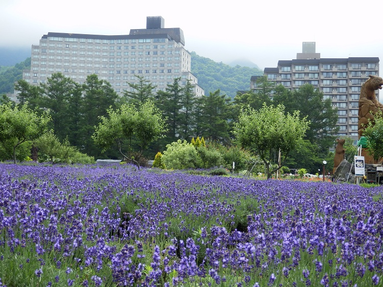 http://www.listel-inawashiro.jp/blog/P7042465.JPG