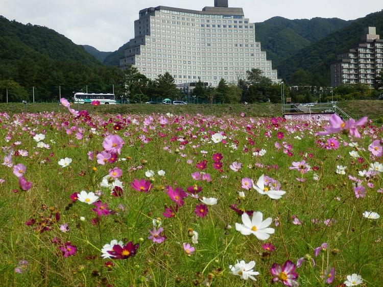 http://www.listel-inawashiro.jp/blog/P9121373.JPG