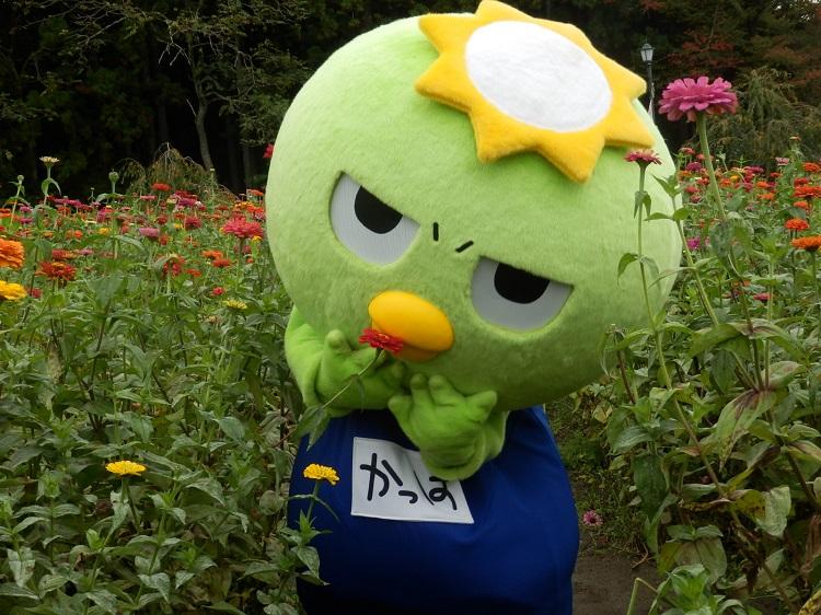 http://www.listel-inawashiro.jp/blog/PA150618.JPG