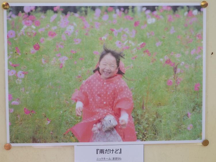 http://www.listel-inawashiro.jp/blog/PA163258.JPG