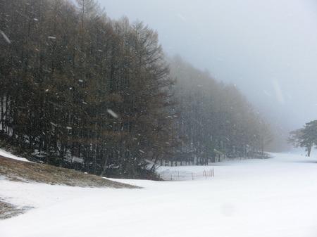 20150323roikuri.JPGのサムネール画像