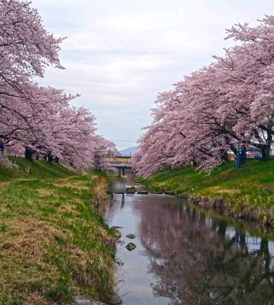 http://www.listel-inawashiro.jp/blog/fujitagawa_2.jpg